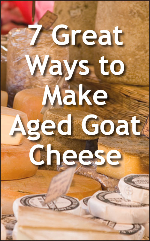 Make Aged Cheese