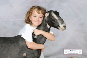 Photo submitted by Deb Mache of Rain Tree Dairy Goats. www.raintreedairygoats.com
