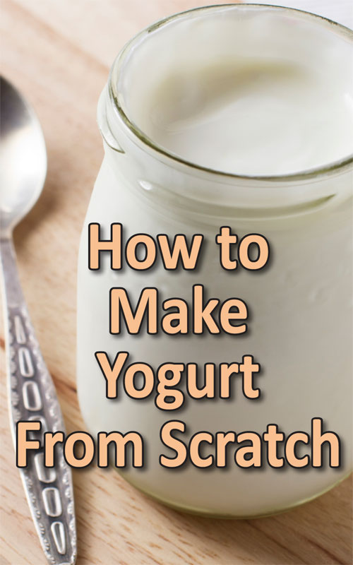 Make Yogurt