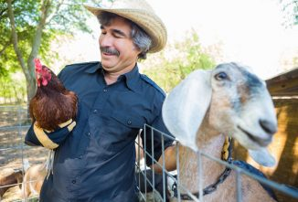 Keeping Goats With Chickens