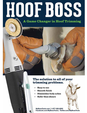 Hoof Boss Tools