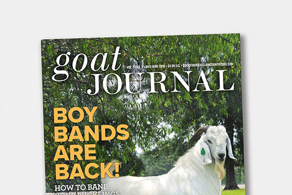 Goat Journal 6 issue Print Subscription