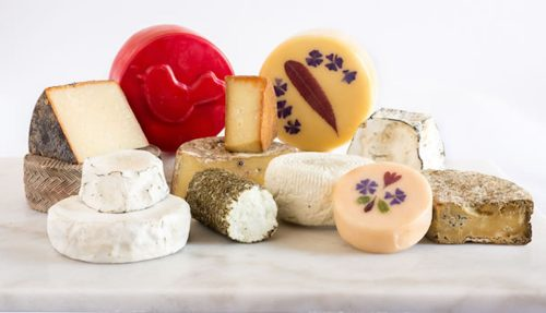 The Wide World of Popular Cheeses!