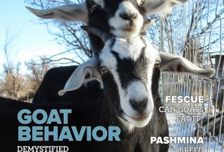 Goat Journal January/February 2020