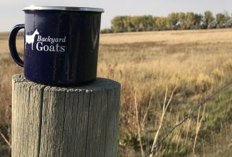 Win a Camp Mug from Backyard Goats and Goat Journal