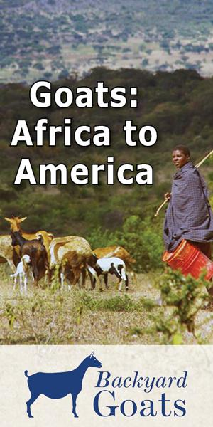 africa-to-america-migration
