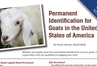 Permanent Identification for Goats in the United States of America